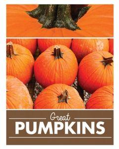 Poster Produce - Pumpkins